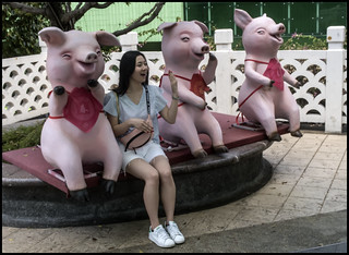 Three Little pigs and a girl-1=