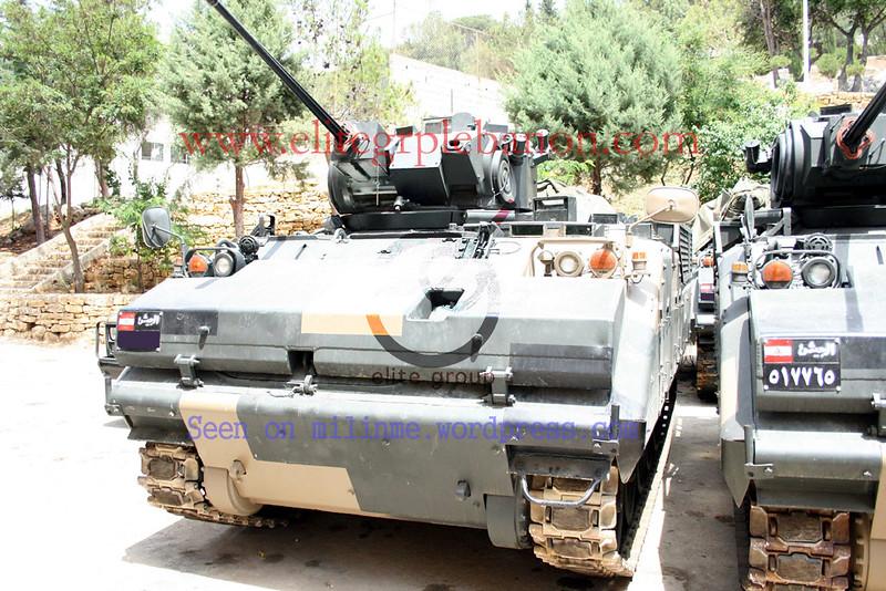 AIFV-B-C25-lebanon-c2010-mln-2