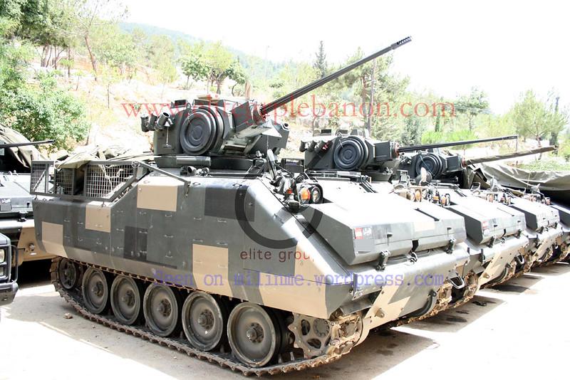 AIFV-B-C25-lebanon-c2010-mln-1
