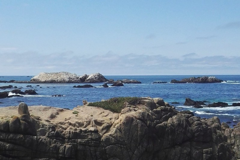 Bird Rock, 17-Mile-Drive, California