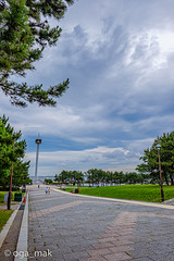 2019-06-27 葛西臨海公園
