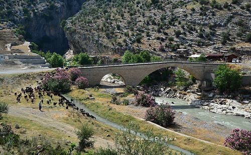 adana turkey türkiye gezi kapıkayakanyonu travel karaisalı köprü bridge çakıtköprüsü
