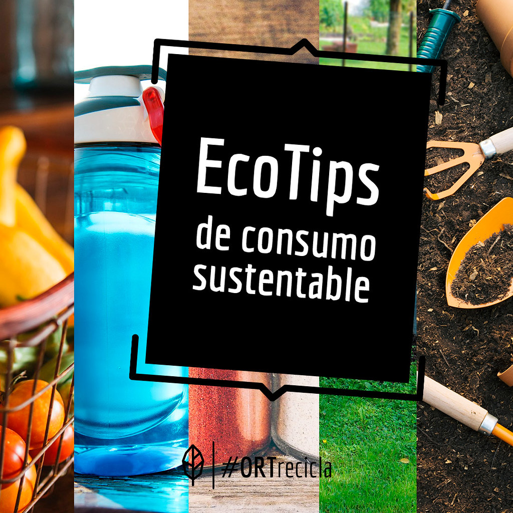 Eco Tips de consumo sustentable
