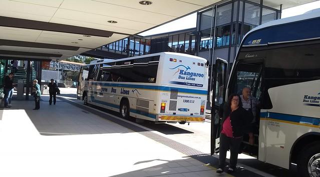 Rail buses at Park Road/Boggo Road busway station