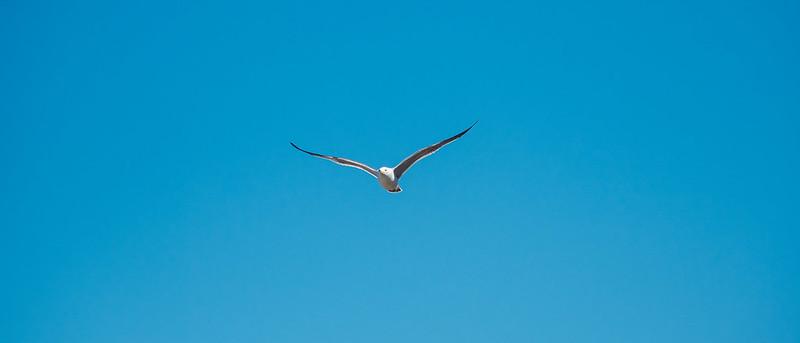 鷗島|北海道 Hokkaido