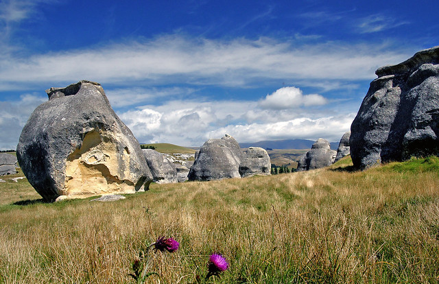 A limestone landscape.