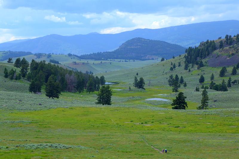 IMG_6794 Specimen Ridge Trail