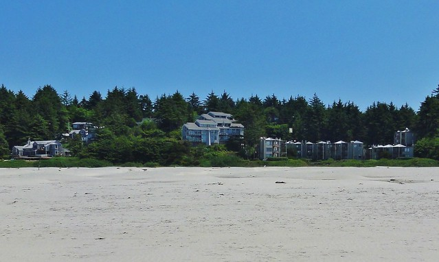 Looking over the broad sands of Agate Beach, you can see apartment buildings, homes, and businesses nestled in the trees just a few feet above sea level - well inside the danger zone
