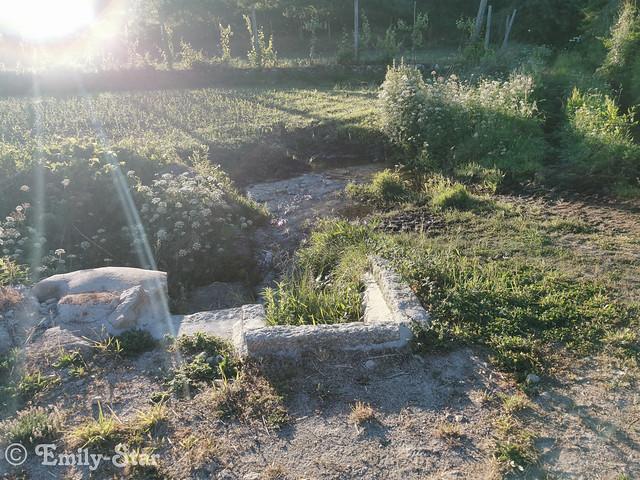 Camino Portugues-070101