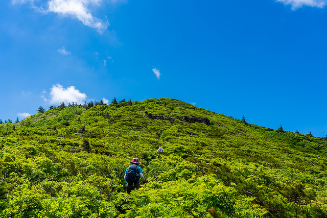 前山への登り