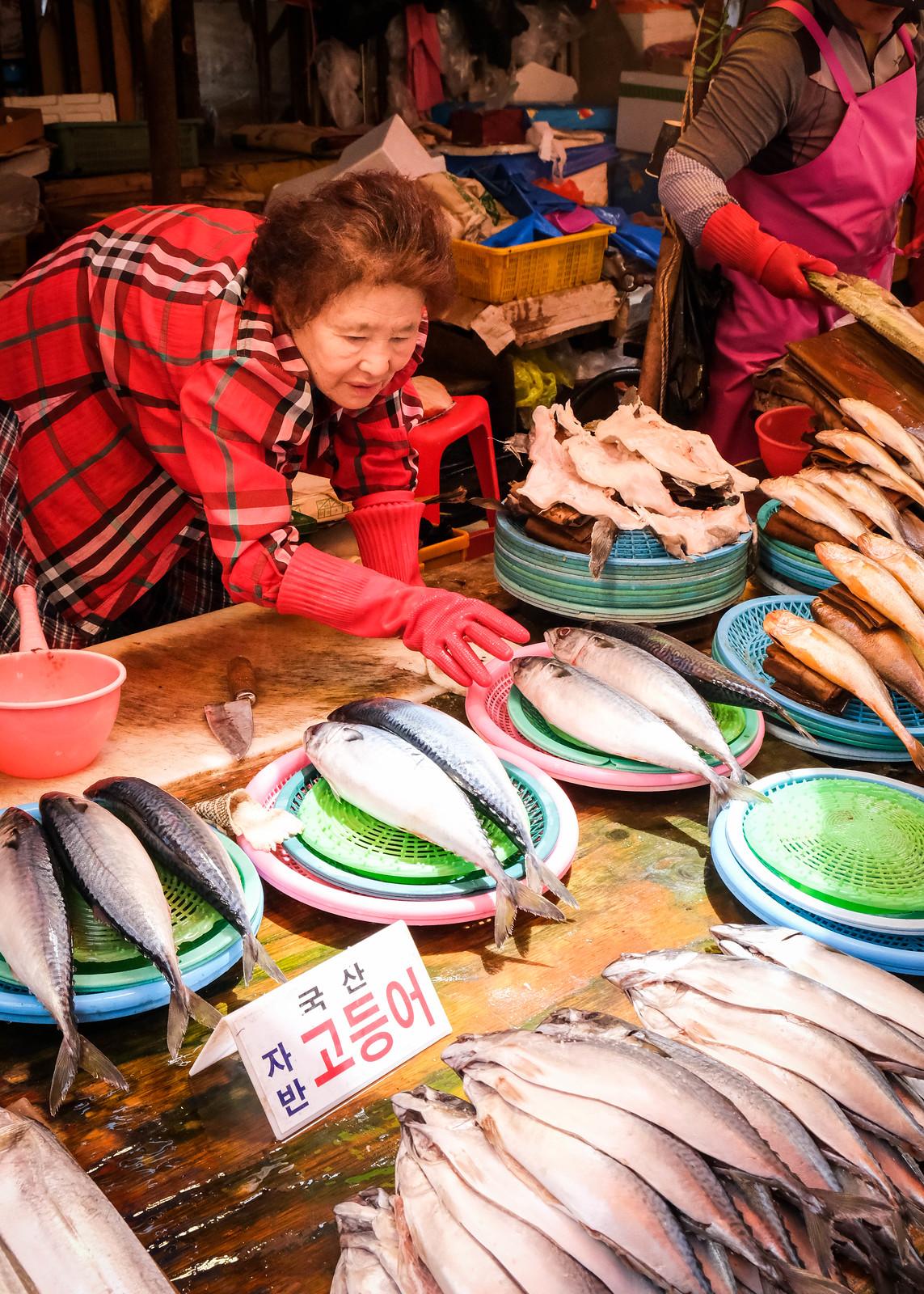 札嘎其市场鱼上的显示