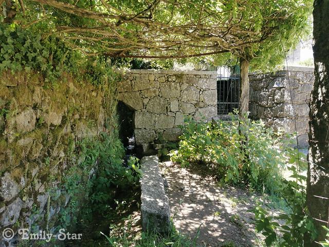 Camino Portugues-125232