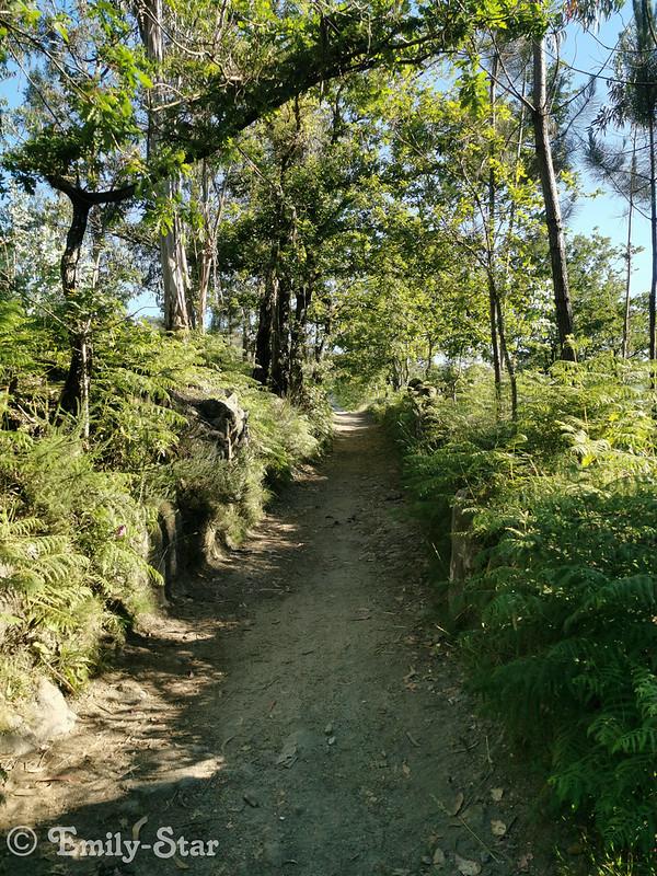 Camino Portugues-083756