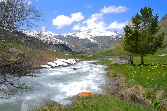 """""""Les petits ruisseaux font les grandes rivières. """"  -  'Small streams make great rivers.'"""