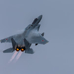 Mitsubishi F-15J/DJ 204th Tactical Fighter Squadron  / 9th Air Wing @Naha Airbase