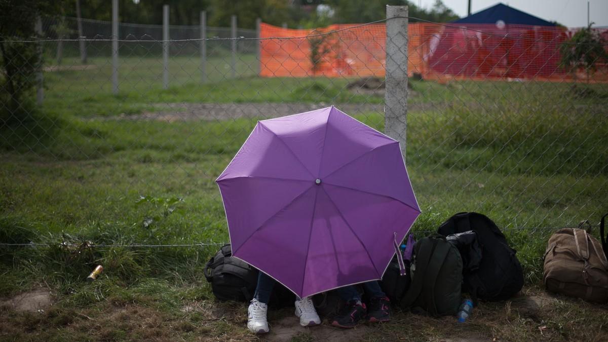 Megalázó kérdések és pszichológiai tesztek várják a meleg menekülteket