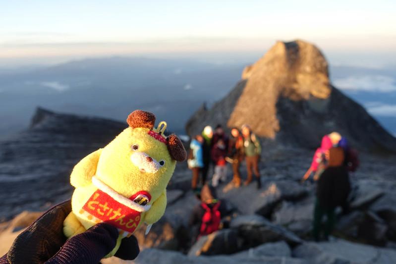 20190505_キナバル山登山(2日目)_0479.jpg