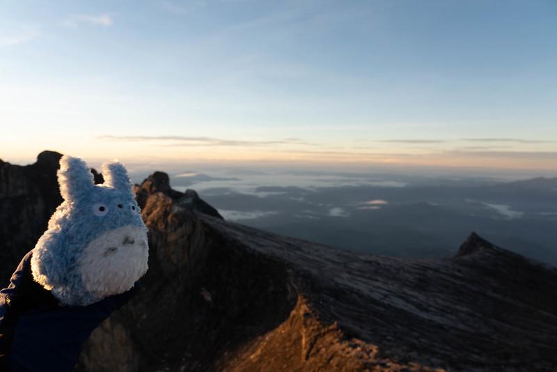 20190505_キナバル山登山(2日目)_0380.jpg