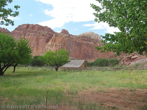 Barn from the orchards in Fruita, Capitol Reef National Park, Utah, Family-friendly hikes in Capitol Reef