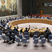 June 28, 2019 - 10:06am - Security Council meeting on The situation in Mali.  Report of the Secretary-General on the situation in Mali (S/2019/454). Vote