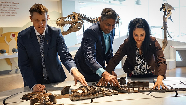 Royal Tyrrell Museum opens new stomping grounds