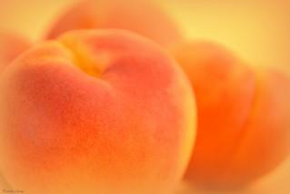 Apricotly Apricot