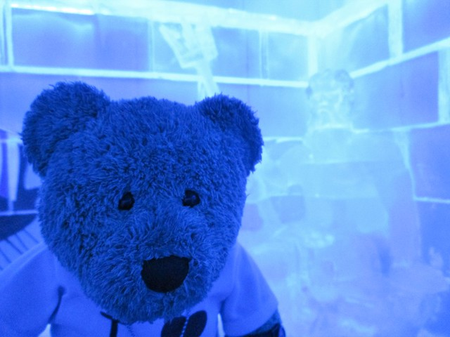There's lotsa ice sculptures too!