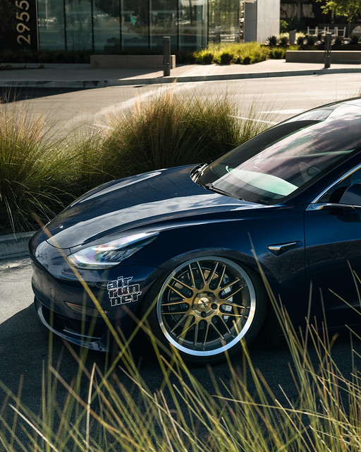 TSW Avalon - Tesla Model 3 brushed bronze rotary forged wheels rims - Air Suspension - Bagged - 01
