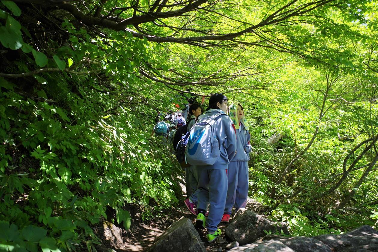 遠足で磐梯山を登る中学生たち