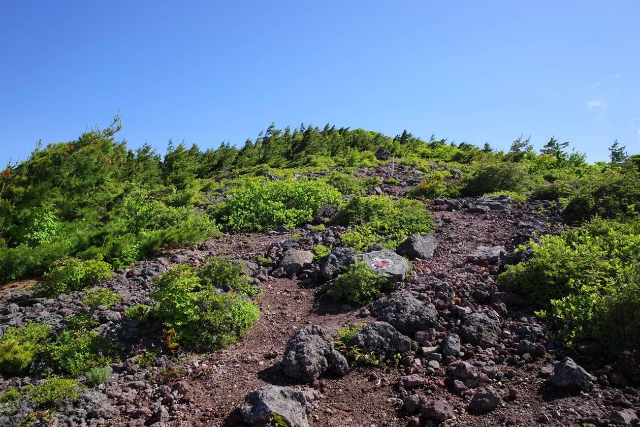 赤埴山の稜線