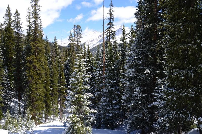 Snowy peaks at butler gulch in spring (2)