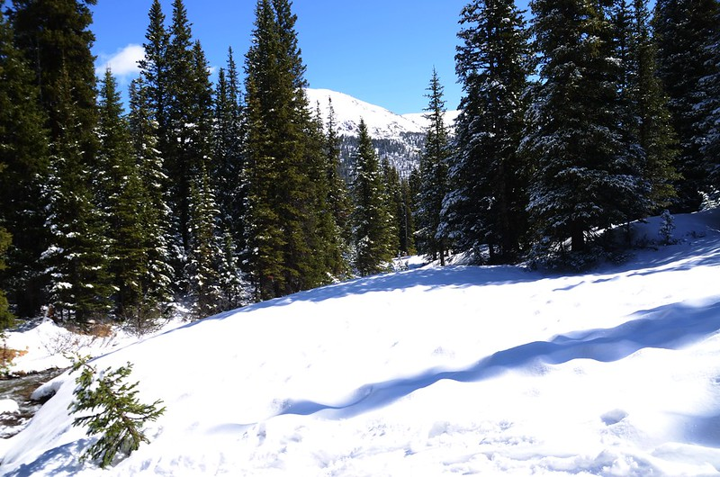 Snowy peaks at butler gulch in spring (1)