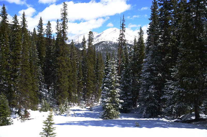 Snowy peaks at butler gulch in spring (4)