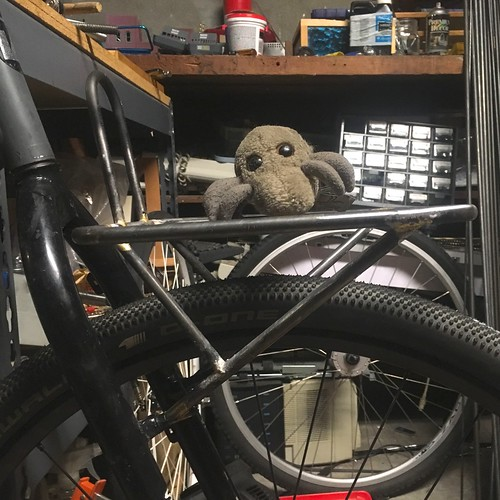 Surly hoverrack & Dust Mite