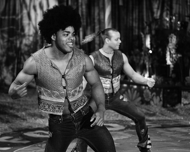 The Havana Circus Company