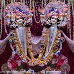 ISKCON Vrindavan Deity Darshan 29 June 2019
