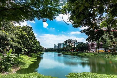 bangladesh dhaka banani lake tree green landscape sony rx100m3 gulshan2