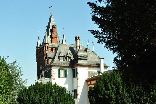 Sommer 2019 ... Weinheim: Libanon-Zeder, Innenstadt, Marktplatz, Café, Frühstück, St. Laurentius-Kirche, Schloss Berckheim, Schlosspark, Blauer Turm ... Fotos: Brigitte Stolle