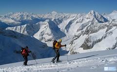 Grosser Aletschhorn