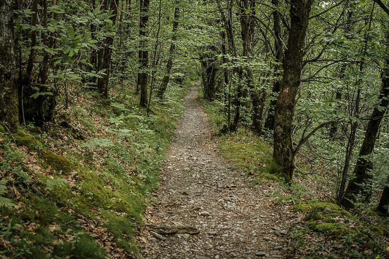 Via Podiensis (Camino de Santiago)
