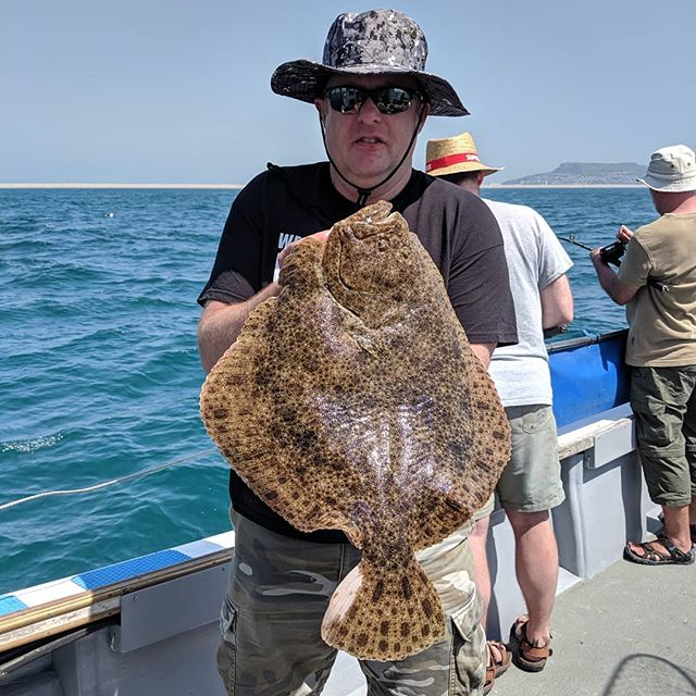 A cracking 10lb Turbot in the most unlikely place while fishing at anchor. #amarisaweymouth #turbot #fishingtrip #fishing