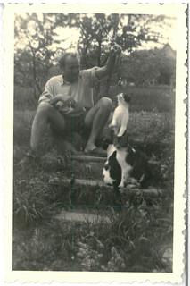 Man with three cats