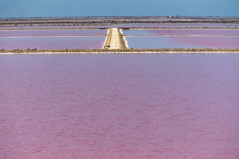 Salinas rosas en Paisajes48155038832_6e3bbfcafc_c