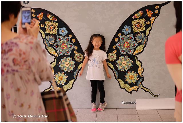 The Butterfly Kid - Lansdowne XT7206e