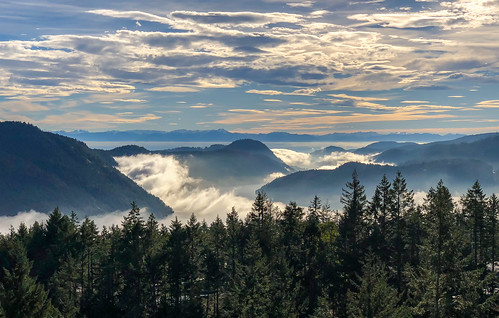 trees victoria bc landscape water mountains canada panorama britishcolumbia iphone clouds cowichanvalley