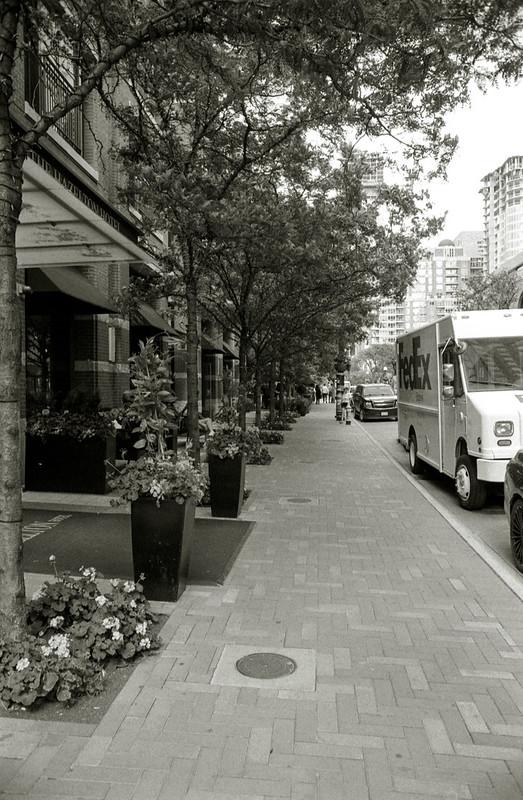 Yorkville Ave North Sidewalk