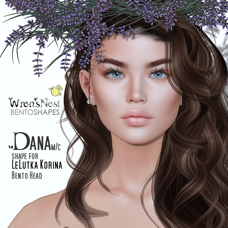 { wren's nest } Dana Shape for LeLutka Korina bento head