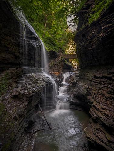 "newyork unitedstatesofamerica watkinsglen park morning ny green landscape waterfall hike cliffs erosion trail gorge ""statepark"" ""gorgetrail"""