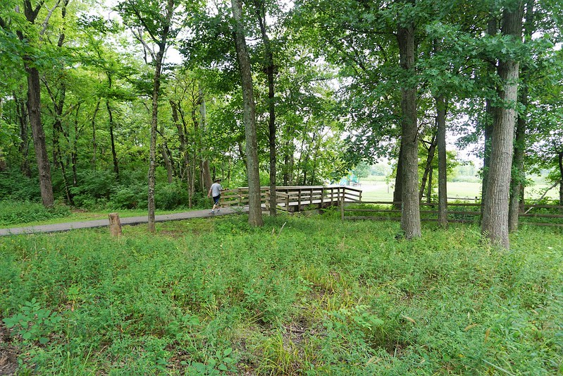 Travel to Butler County, Ohio - Forest Run MetroPark, Hamilton, Aug. 11, 2018