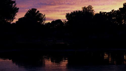2019 canon5dmarkiv june lasvegas nevada tamron45mmf18divcusd usa desert park sky summer sunset tree silhouette trees